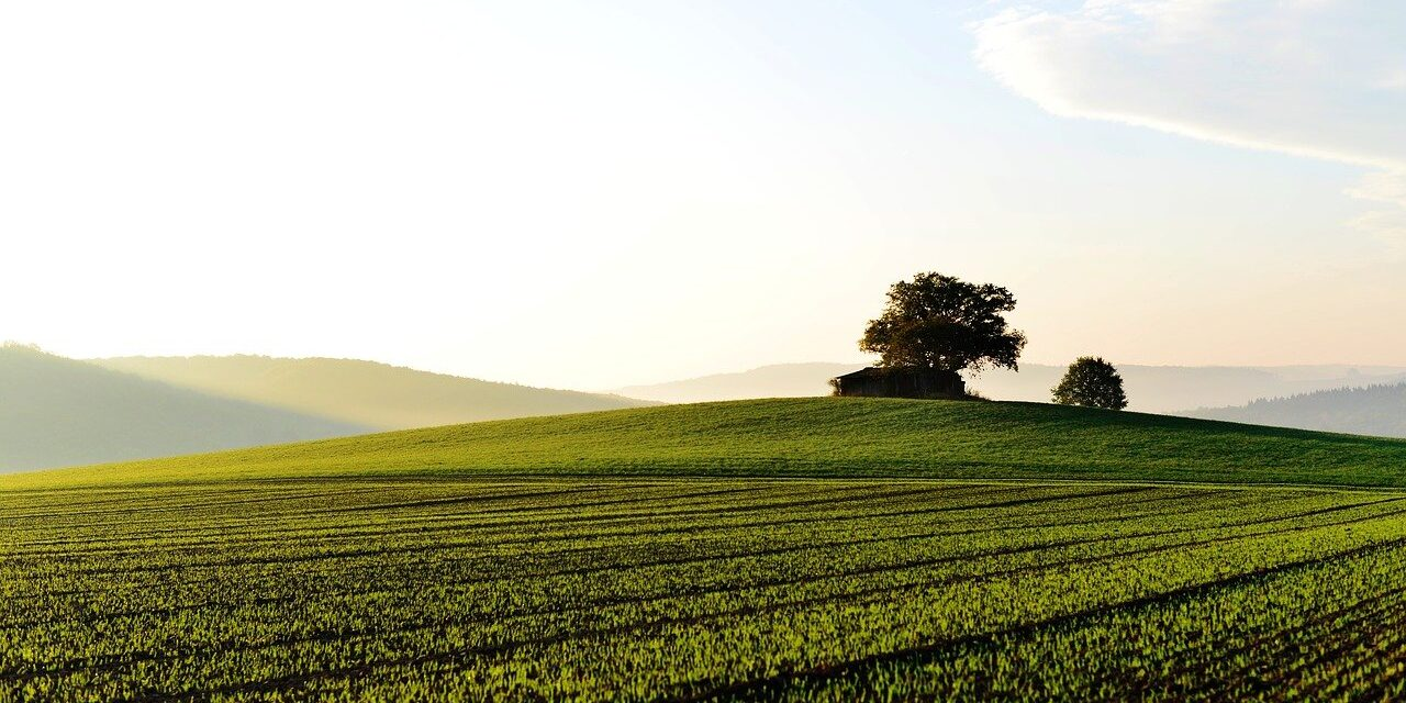 8 facteurs importants à prendre en compte avant l'achat d'un terrain
